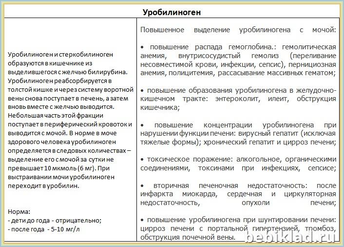 эритроциты моча анализ