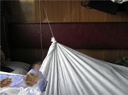 Безопасность ребенка в поезде