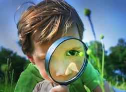 Как развить в ребёнке любознательность