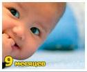 Рост и вес ребенка 9 месяцев