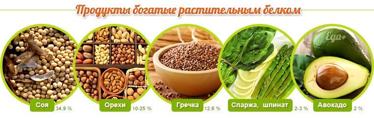 belki_rastitelnogo_proishozhdenyja