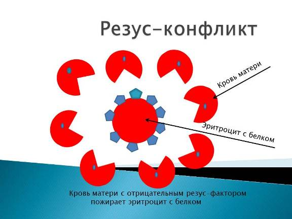 резус конфликт крови