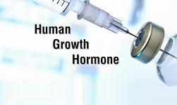 гормоны роста человека