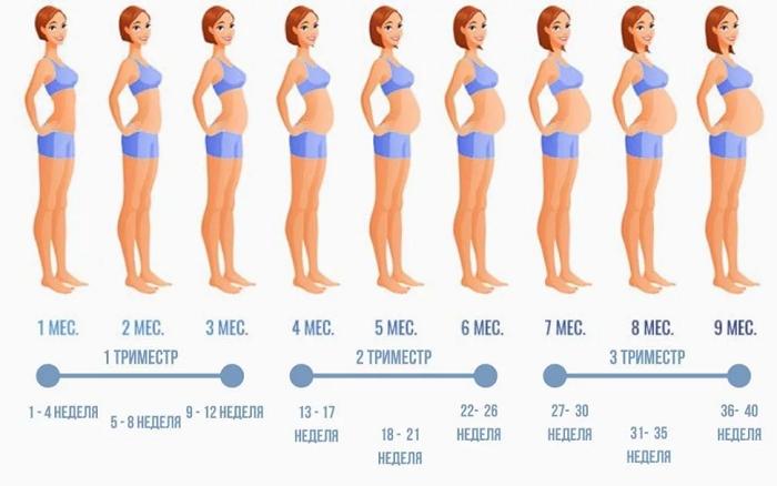 как меняется тело при беременности