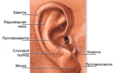 После перенесенного отита болит ухо