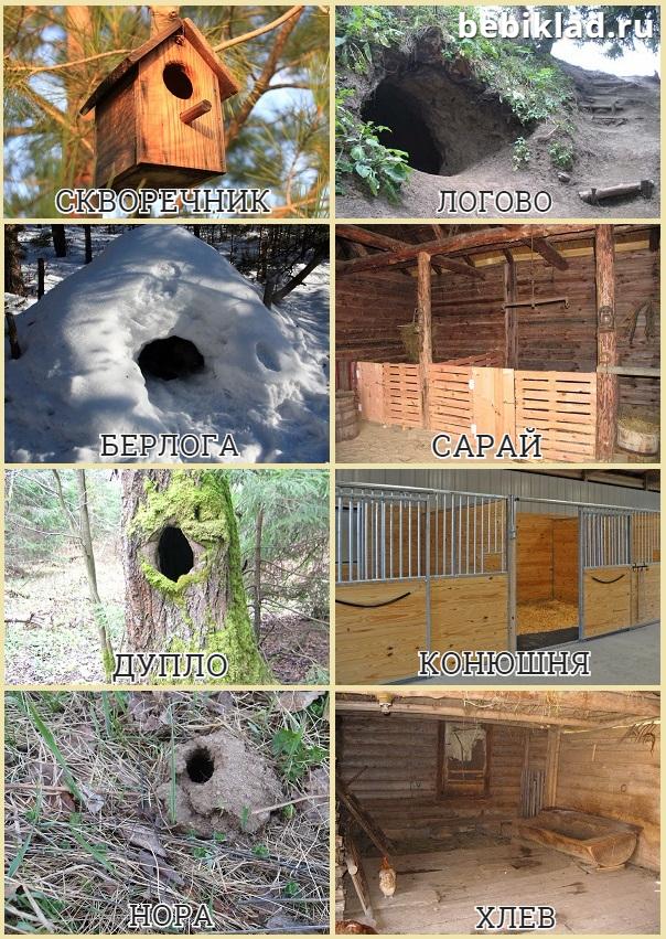 кто где живет домики