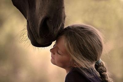 люди под знаком лошади