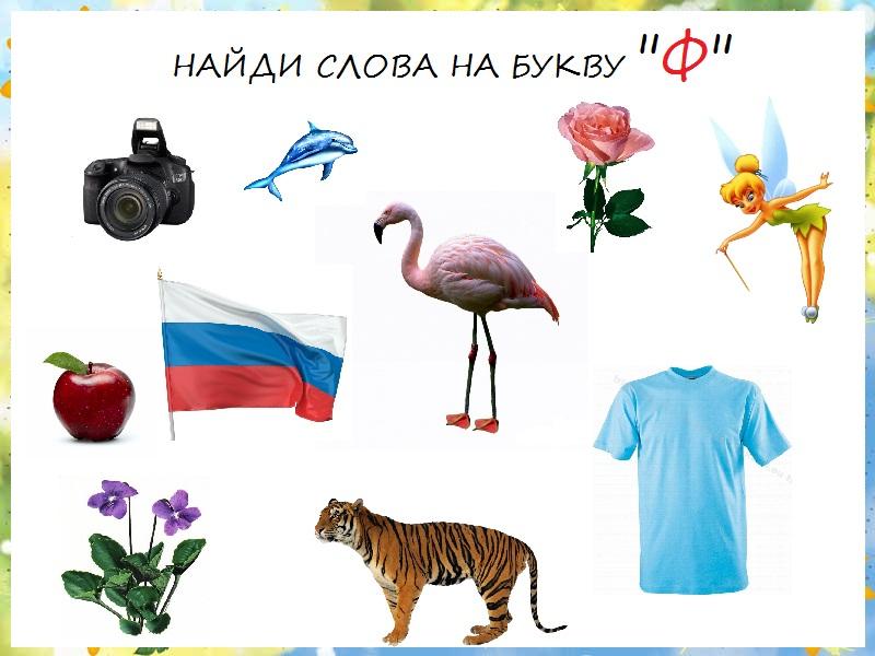 ф фотографии: