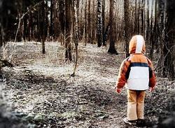 ребенок заблудился в лесу