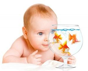 рыба детям