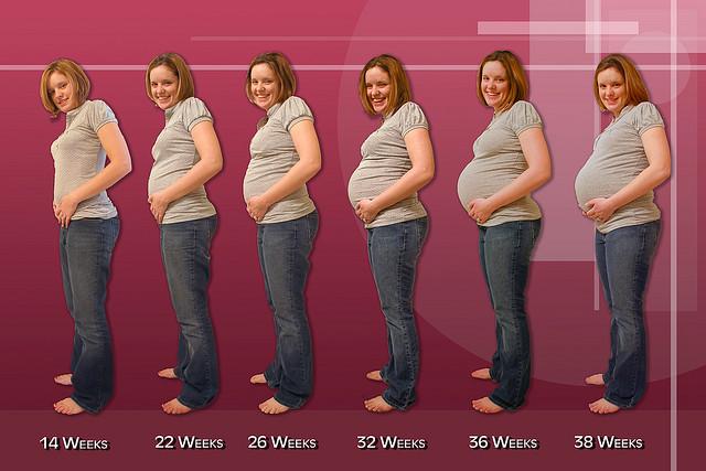 Как определить срок беременности   БебиКлад c59d9931cbd