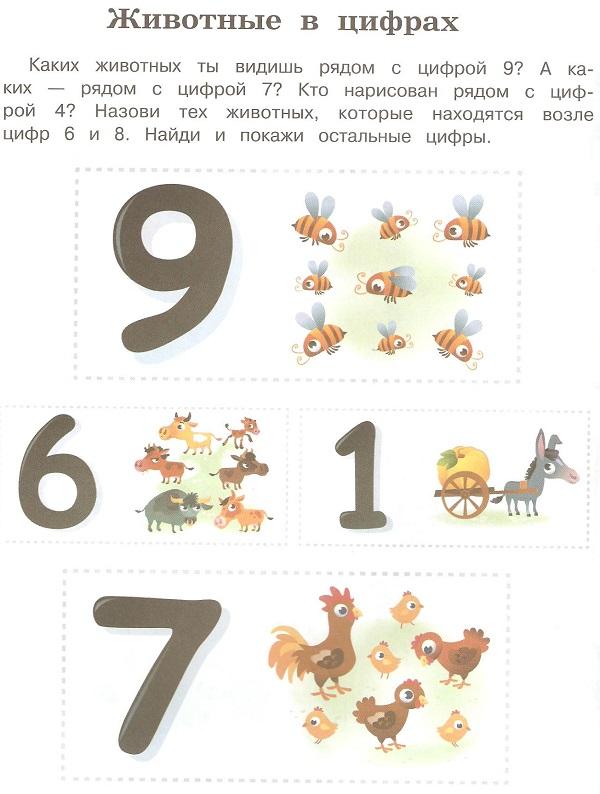 животные цифры